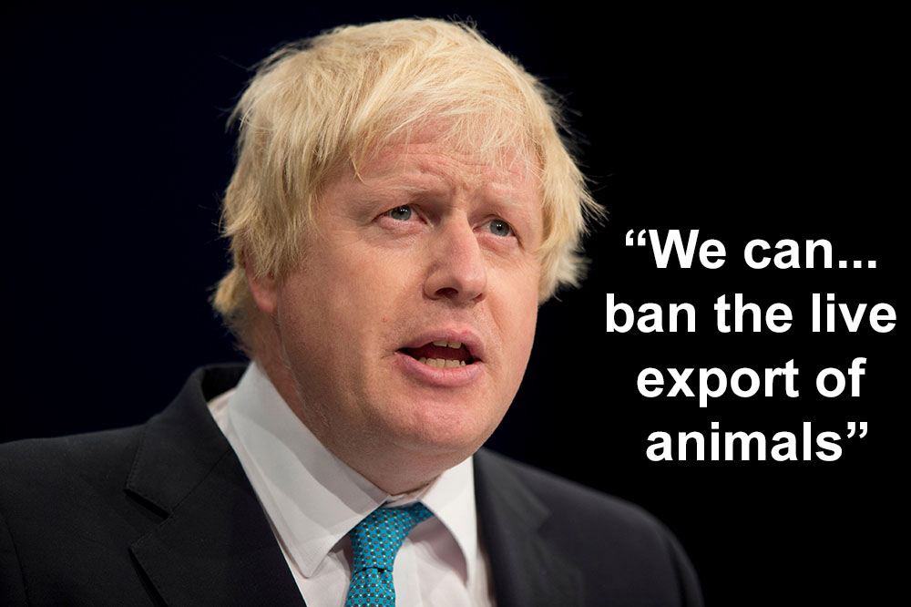 Boris Johnson exports quote