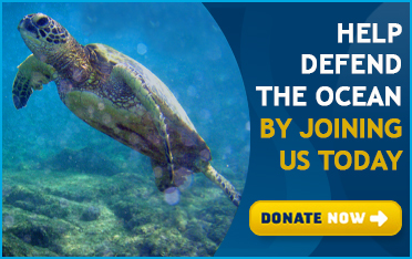 Defend the ocean