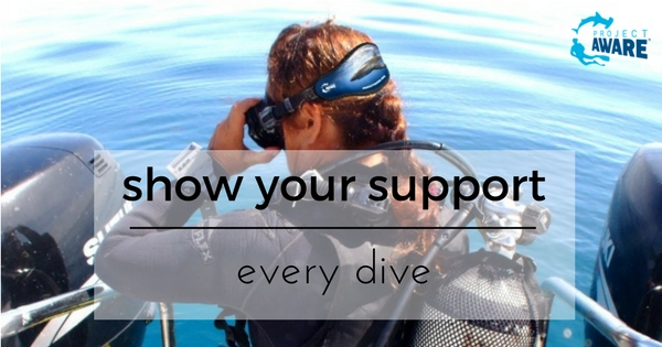 Diver wearing Project AWARE Silky Shark Mask Strap