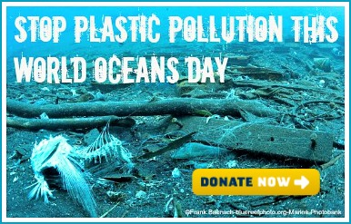 Stop Plastic Pollution This World Oceans Day