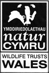 Wildlife Trusts Wales