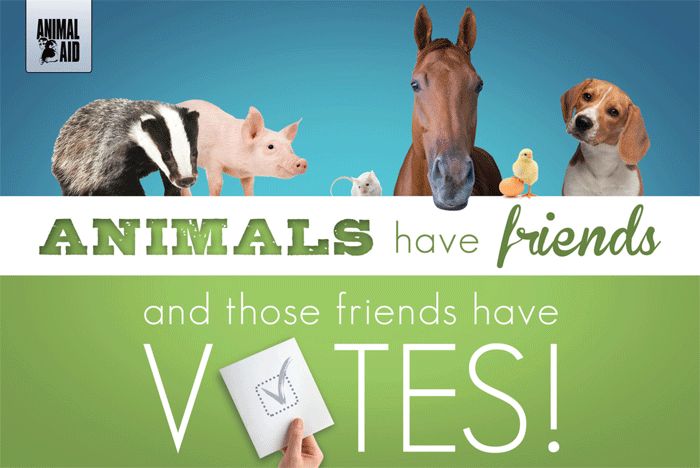 Vote for Animals