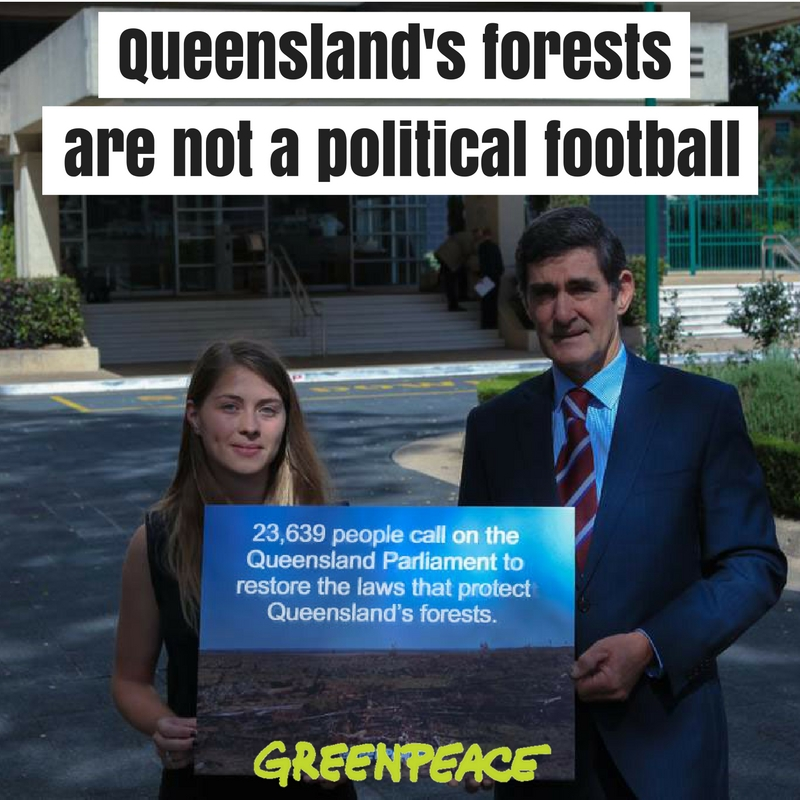 A disappointing verdict for Queensland's forests, trees and wildlife
