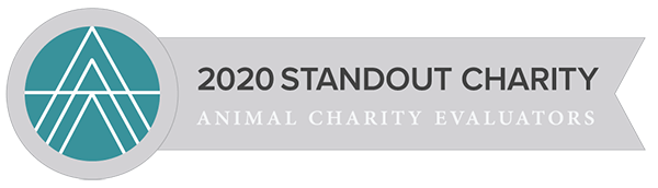 2020 Standout Charity - Animal Charity Regulators