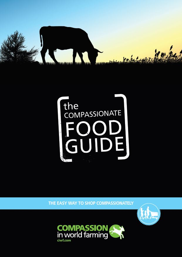 us food guide cover.JPG