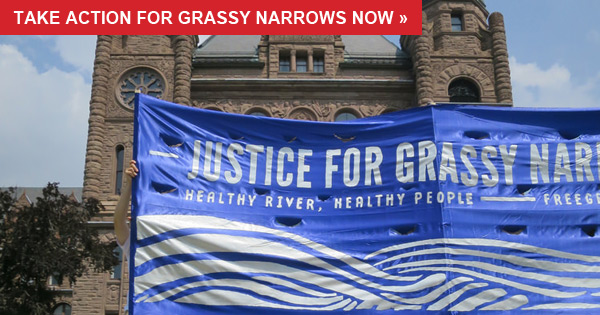 Please take a moment to send an email to the federal and provincial governments in support of the people of Grassy Narrows.