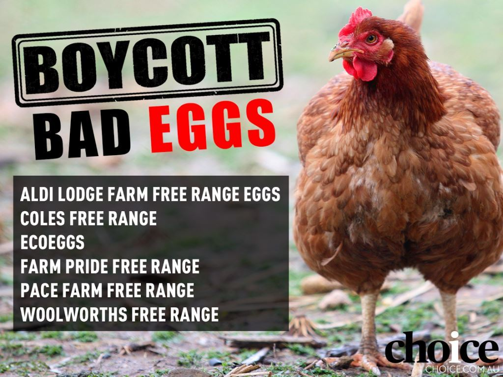 Boycott-bad-eggs-list.jpg
