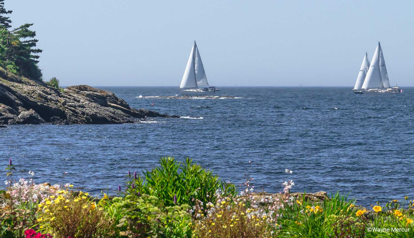 Mid-form Hero Seascape with Sailboats.jpg