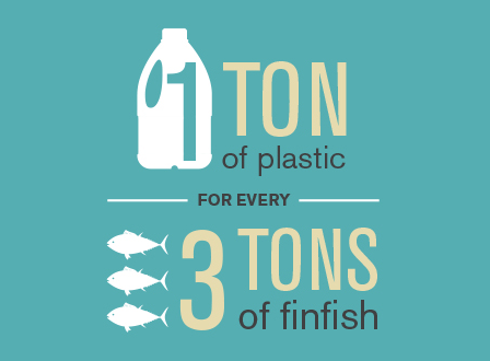 infographic on one ton of plastic for every three tons of fish