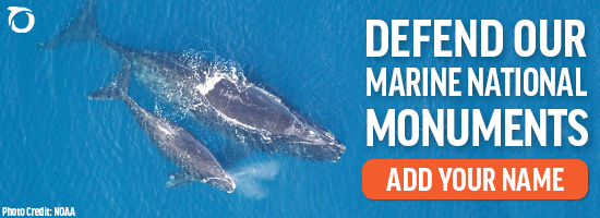Defend our marine national monuments. Add your name.