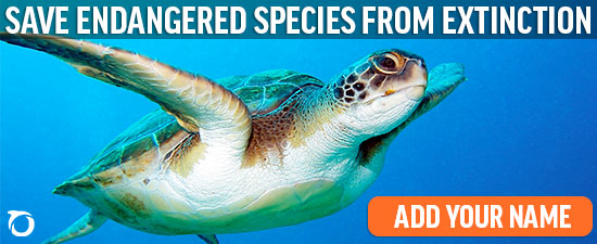 Save endangered species from extinction
