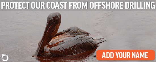 Protect Our Coast From Offshore Drilling. Add Your Name.