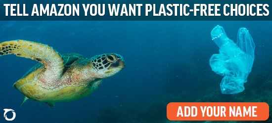 Tell Amazon you want plastic-free choices.