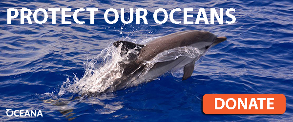 Protect our oceans. Donate.