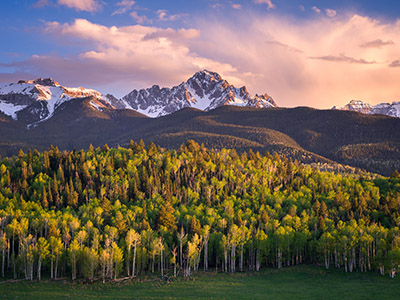 Mountains and Trees, Photo courtesy of: Jack Brauer