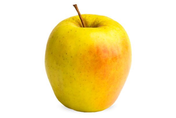 decorative apple thumbnail