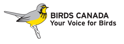 Learn more about Canada's wild birds