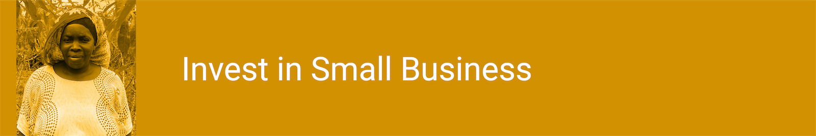 Invest in Small Business
